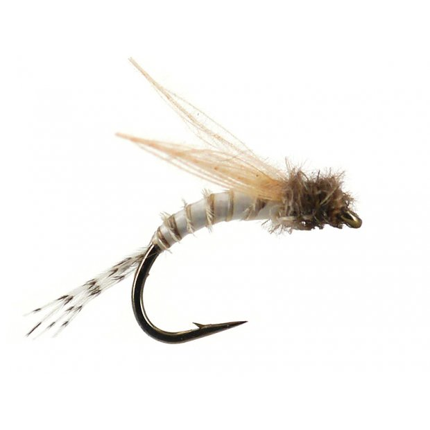 Bwo Emerger 01