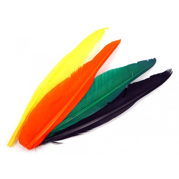 PLUMA QUILL DE GANSO (GOOSE QUILL FEATHER) hotfly - 1...